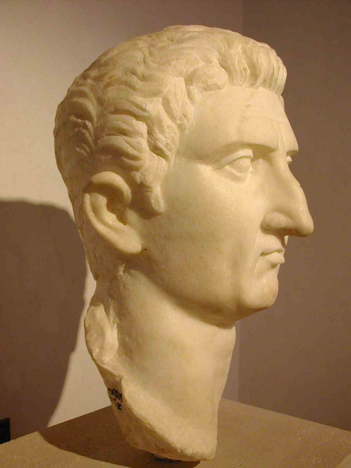 Nerva the Nose - Forgotten Roman Emperors No.32